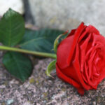 The 5 reasons to get a funeral insurance